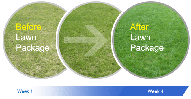 Grass After Lawn Package